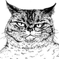 cats_meow02